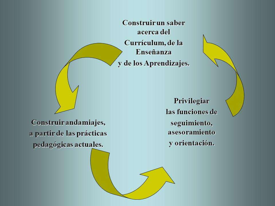 Construir andamiajes, a partir de las prácticas pedagógicas actuales. Construir un saber acerca del Currículum, de la Enseñanza y de los Aprendizajes.