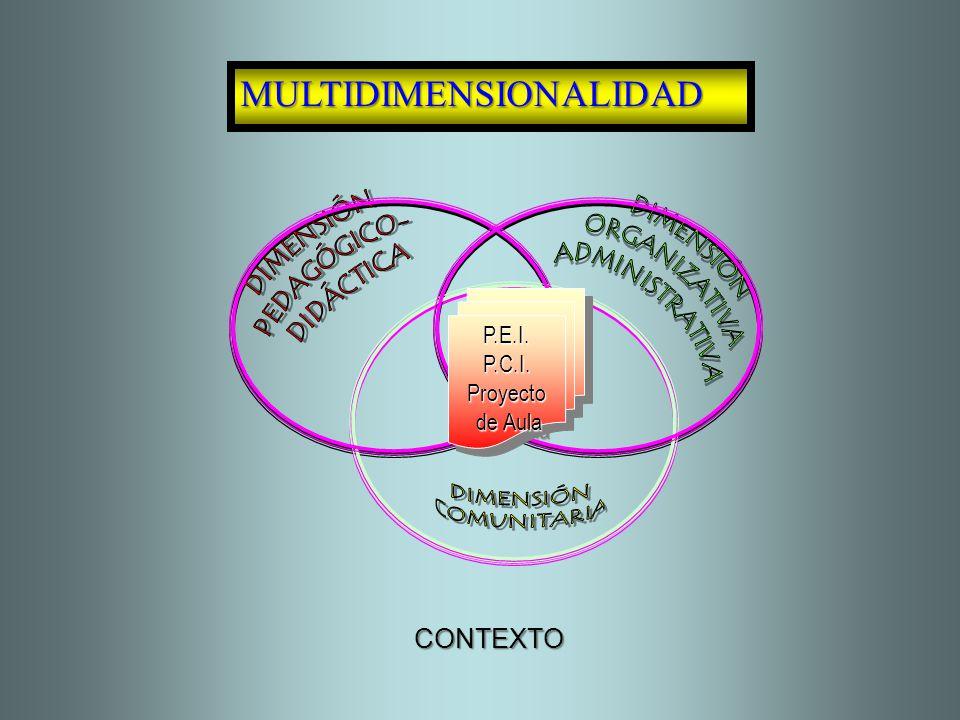 MULTIDIMENSIONALIDAD P.E.I.P.C.I.Proyecto de Aula de AulaP.E.I.P.C.I.Proyecto CONTEXTO