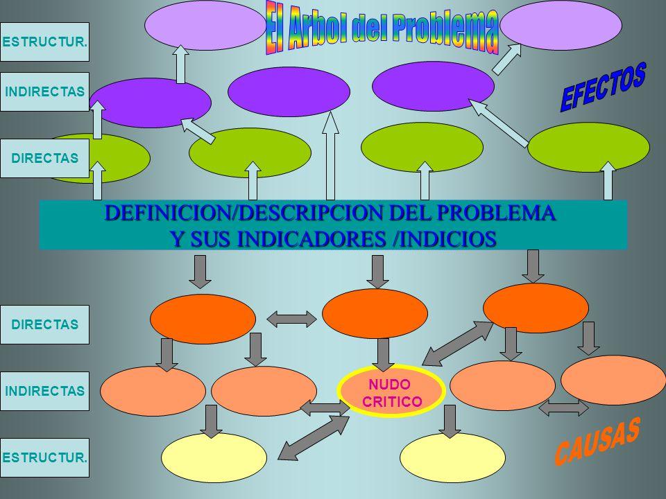 DEFINICION/DESCRIPCION DEL PROBLEMA Y SUS INDICADORES /INDICIOS DIRECTAS INDIRECTAS ESTRUCTUR. NUDO CRITICO ESTRUCTUR. INDIRECTAS DIRECTAS