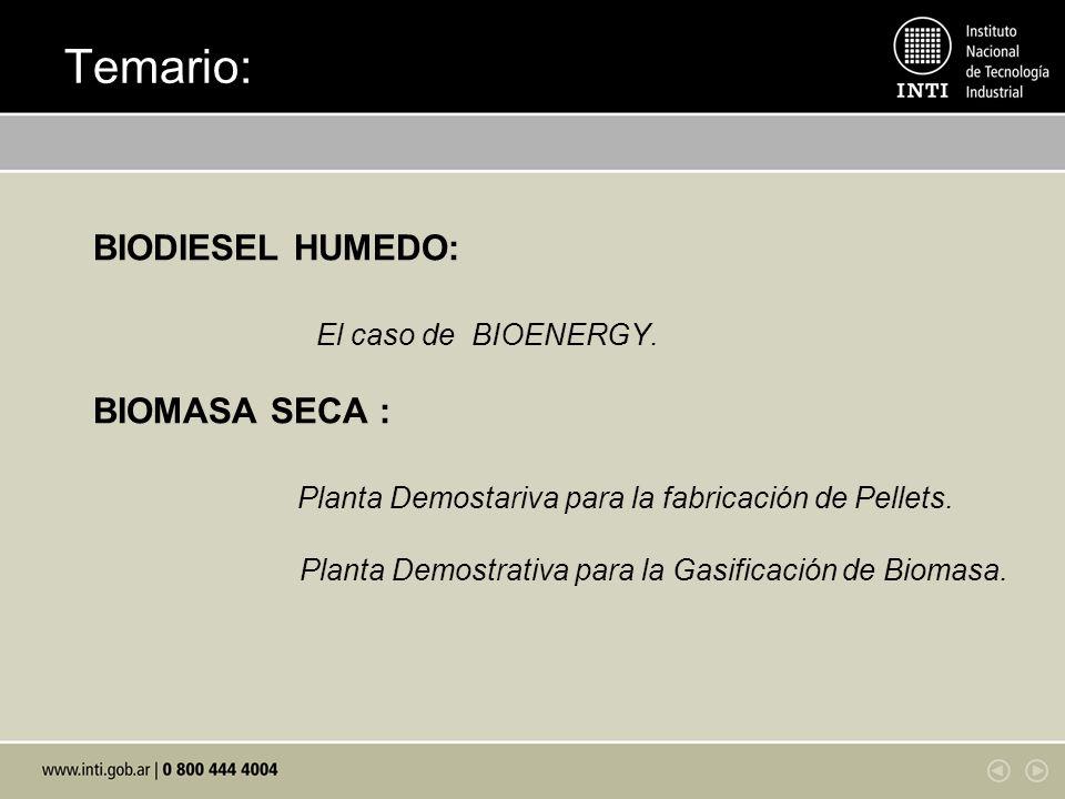 Temario: BIODIESEL HUMEDO: El caso de BIOENERGY.