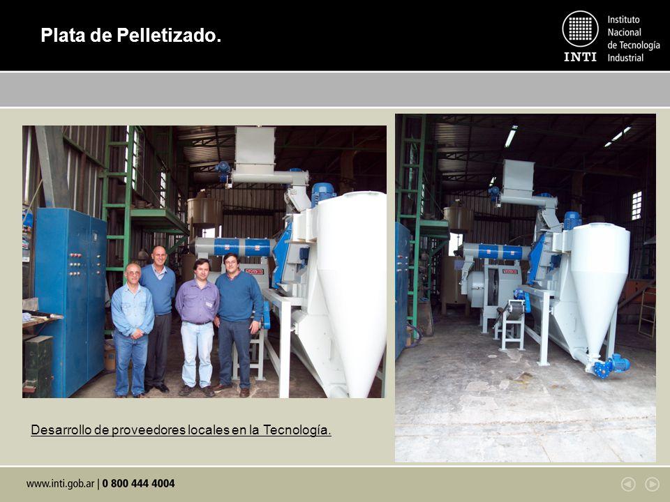 Plata de Pelletizado. Desarrollo de proveedores locales en la Tecnología.