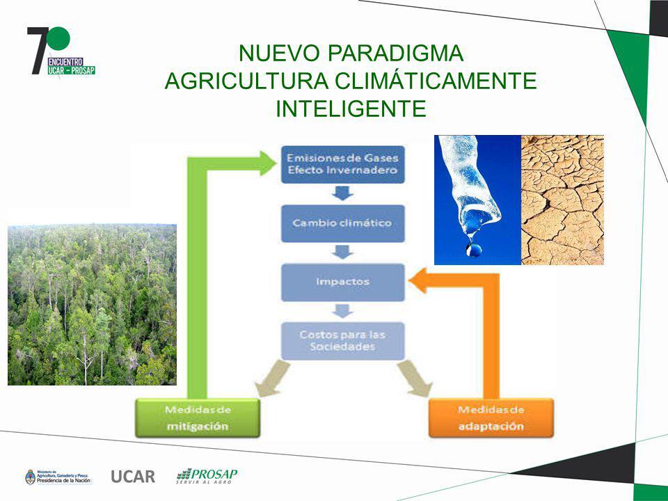 NUEVO PARADIGMA AGRICULTURA CLIMÁTICAMENTE INTELIGENTE..