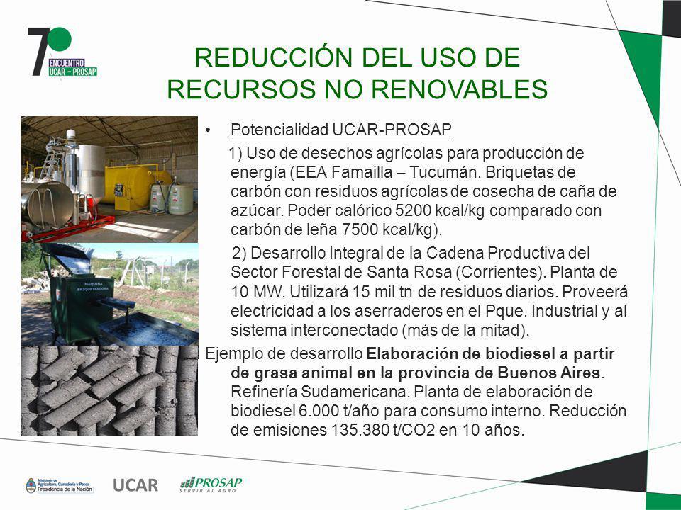 REDUCCIÓN DEL USO DE RECURSOS NO RENOVABLES Potencialidad UCAR-PROSAP 1) Uso de desechos agrícolas para producción de energía (EEA Famailla – Tucumán.
