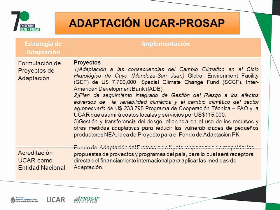 ADAPTACIÓN UCAR-PROSAP Estrategia de Adaptación Implementación Formulación de Proyectos de Adaptación Acreditación UCAR como Entidad Nacional Proyecto