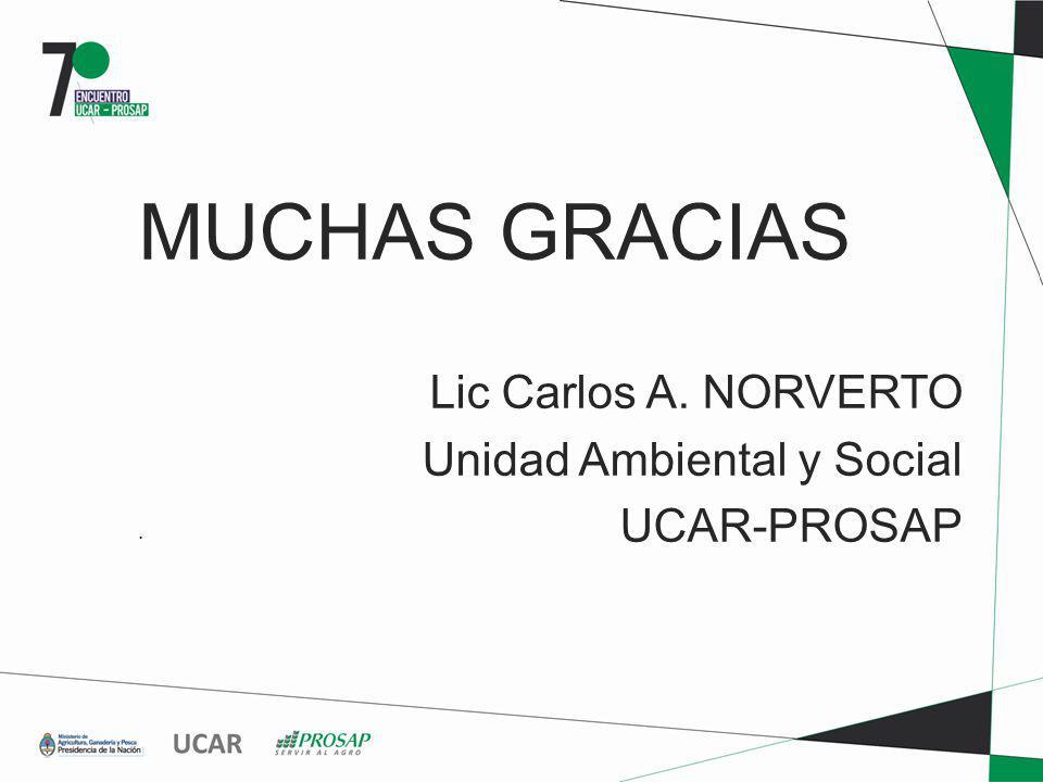 MUCHAS GRACIAS Lic Carlos A. NORVERTO Unidad Ambiental y Social UCAR-PROSAP.
