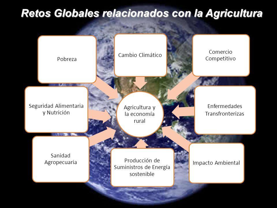 Retos Globales relacionados con la Agricultura Agricultura y la economía rural Enfermedades Transfronterizas Comercio Competitivo Pobreza Cambio Climático Seguridad Alimentaria y Nutrición Sanidad Agropecuaria Producción de Suministros de Energía sostenible Impacto Ambiental
