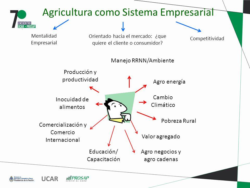 Producción y productividad Agro energía Inocuidad de alimentos Comercialización y Comercio Internacional Cambio Climático Pobreza Rural Educación/ Cap