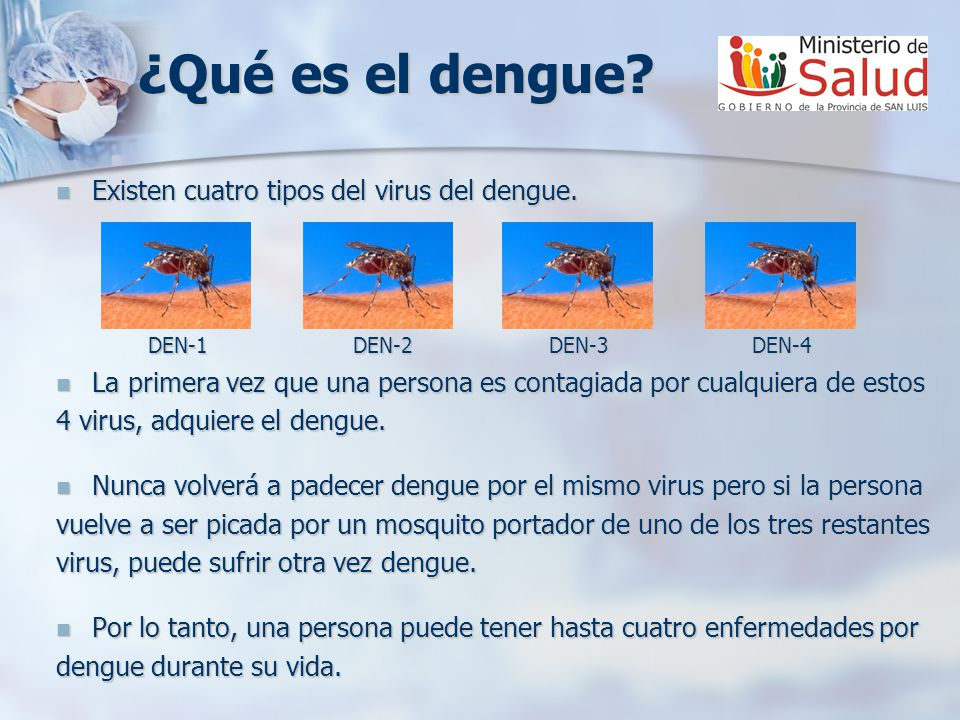 ¿Qué es el dengue? Existen cuatro tipos del virus del dengue. Existen cuatro tipos del virus del dengue. DEN-1 DEN-2 DEN-3 DEN-4 DEN-1 DEN-2 DEN-3 DEN