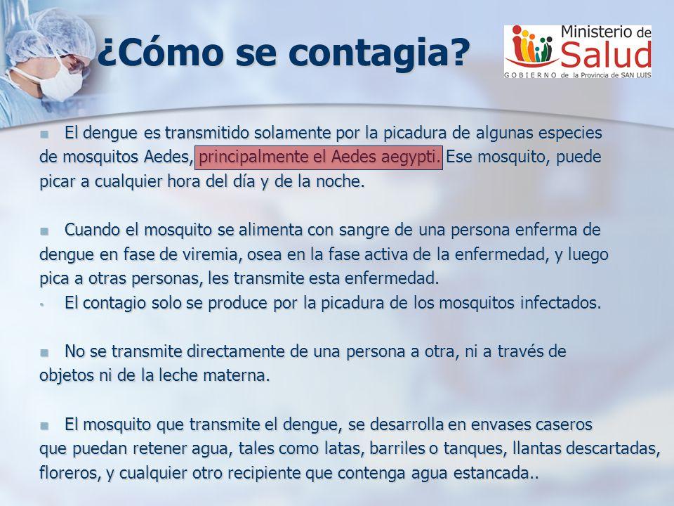 ¿Cómo se contagia? El dengue es transmitido solamente por la picadura de algunas especies El dengue es transmitido solamente por la picadura de alguna