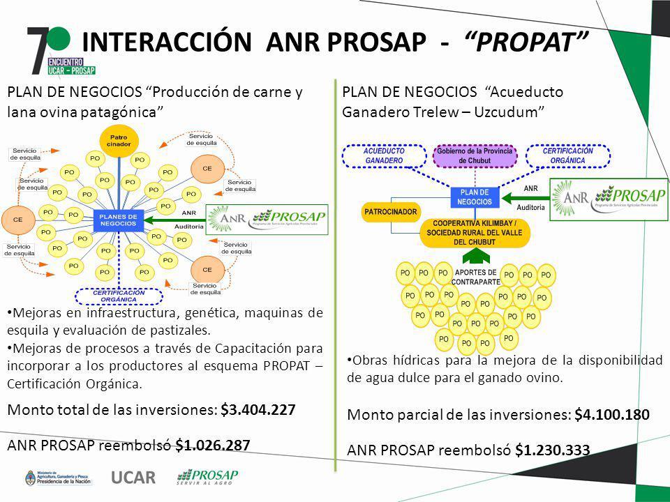 PLAN DE NEGOCIOS Producción de carne y lana ovina patagónica PLAN DE NEGOCIOS Acueducto Ganadero Trelew – Uzcudum Mejoras en infraestructura, genética