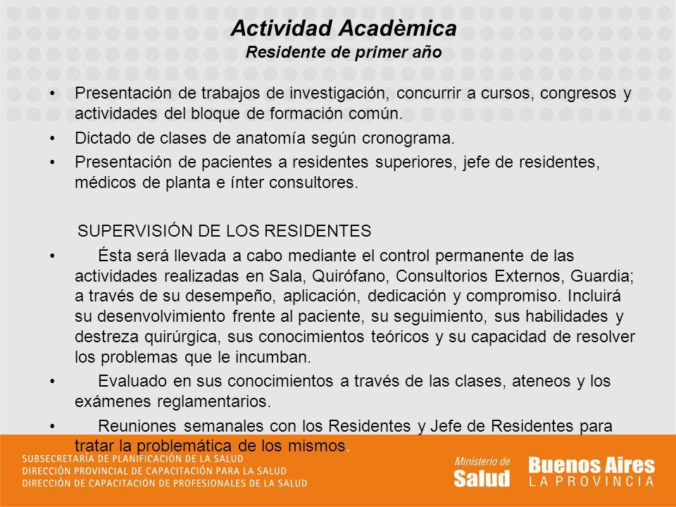 Presentación de trabajos de investigación, concurrir a cursos, congresos y actividades del bloque de formación común. Dictado de clases de anatomía se
