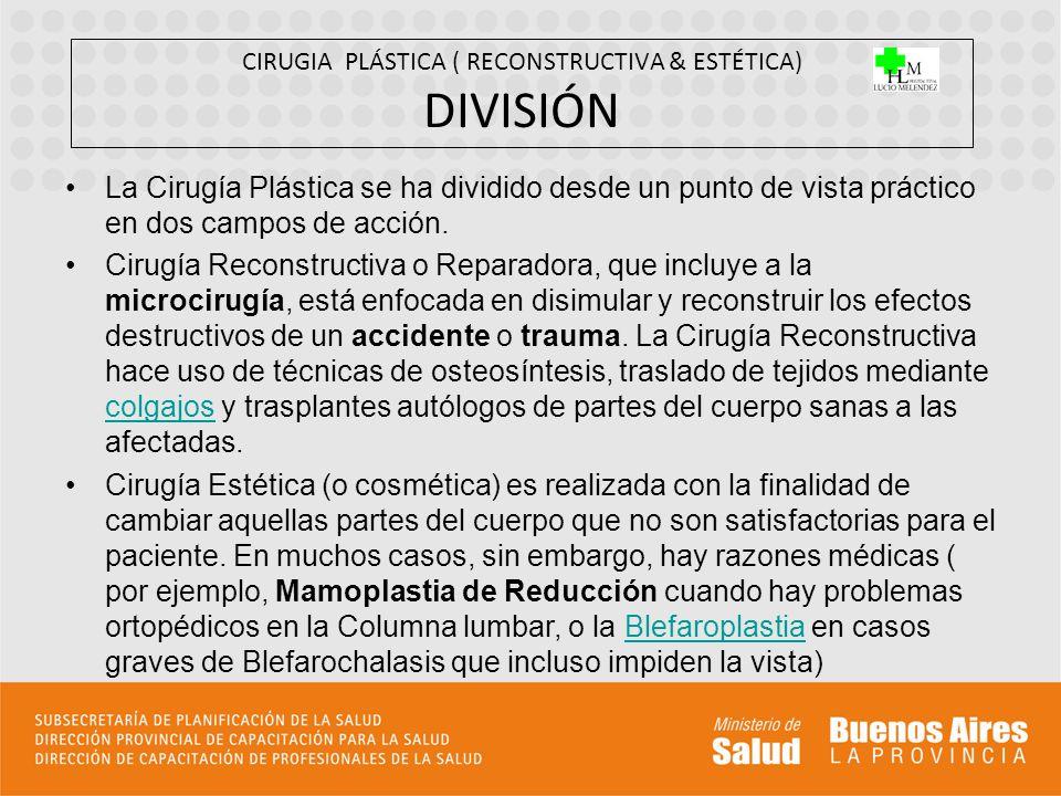 CIRUGIA PLÁSTICA ( RECONSTRUCTIVA & ESTÉTICA) DIVISIÓN La Cirugía Plástica se ha dividido desde un punto de vista práctico en dos campos de acción. Ci