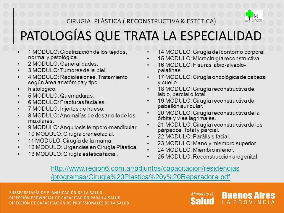CIRUGIA PLÁSTICA ( RECONSTRUCTIVA & ESTÉTICA) ORGANIZACIÓN & ESTADISTICAS ESPACIO FÍSICO: 1.- CONSULTORIOS EXTERNOS: ----------80 x SEMANA / 320 x MES / 3.840 x AÑO.