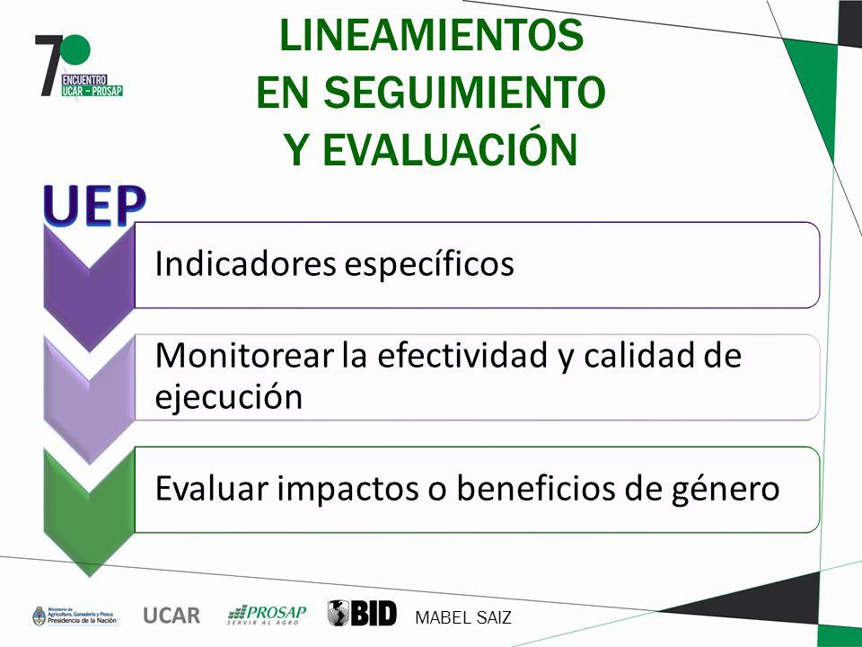 MABEL SAIZ LINEAMIENTOS EN SEGUIMIENTO Y EVALUACIÓN Indicadores específicos Monitorear la efectividad y calidad de ejecución Evaluar impactos o benefi