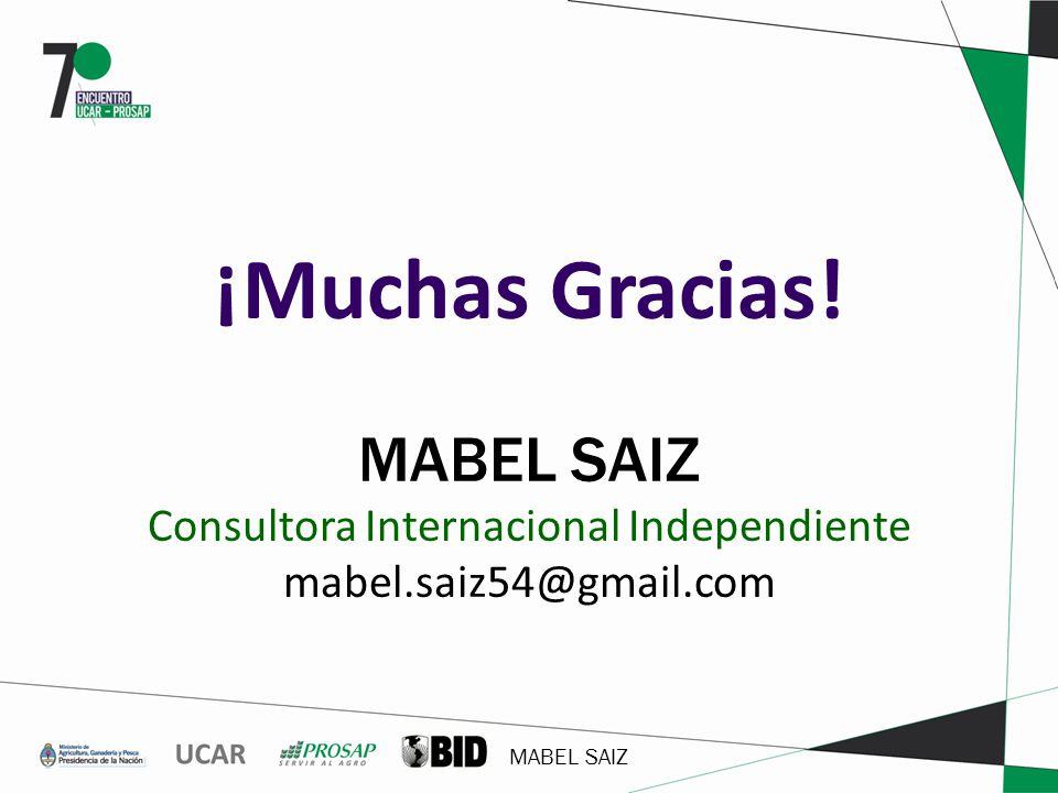 MABEL SAIZ ¡Muchas Gracias! MABEL SAIZ Consultora Internacional Independiente mabel.saiz54@gmail.com