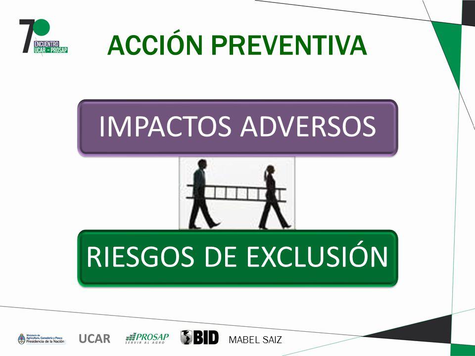 MABEL SAIZ ACCIÓN PREVENTIVA RIESGOS DE EXCLUSIÓN IMPACTOS ADVERSOS