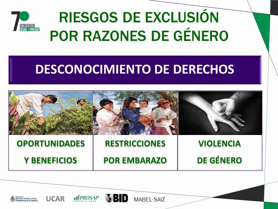 MABEL SAIZ DESCONOCIMIENTO DE DERECHOS RIESGOS DE EXCLUSIÓN POR RAZONES DE GÉNERO OPORTUNIDADES Y BENEFICIOS RESTRICCIONES POR EMBARAZO VIOLENCIA DE G