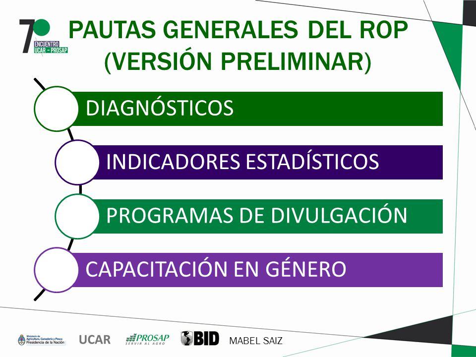 MABEL SAIZ PAUTAS GENERALES DEL ROP (VERSIÓN PRELIMINAR) DIAGNÓSTICOS INDICADORES ESTADÍSTICOS PROGRAMAS DE DIVULGACIÓN CAPACITACIÓN EN GÉNERO