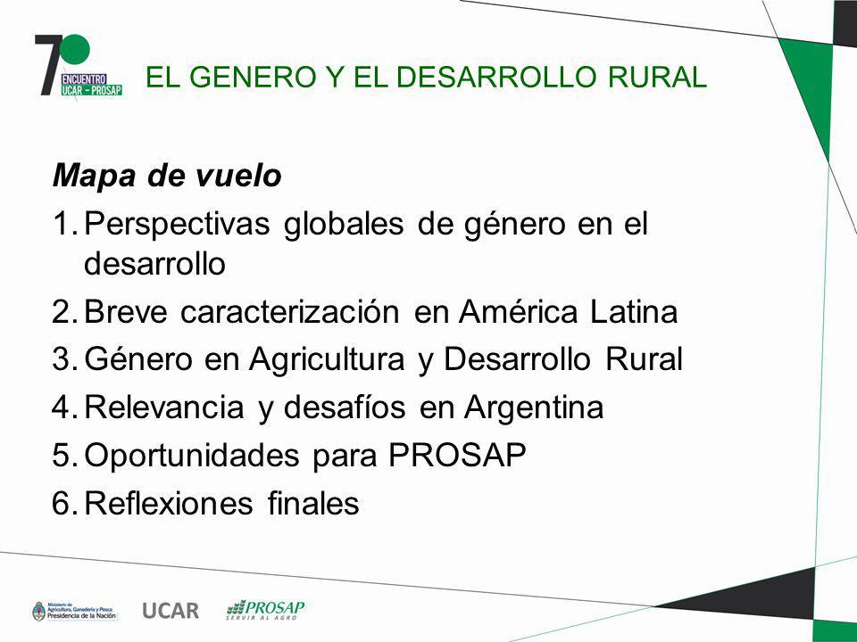 EL GENERO Y EL DESARROLLO RURAL Mapa de vuelo 1. Perspectivas globales de género en el desarrollo 2. Breve caracterización en América Latina 3. Género