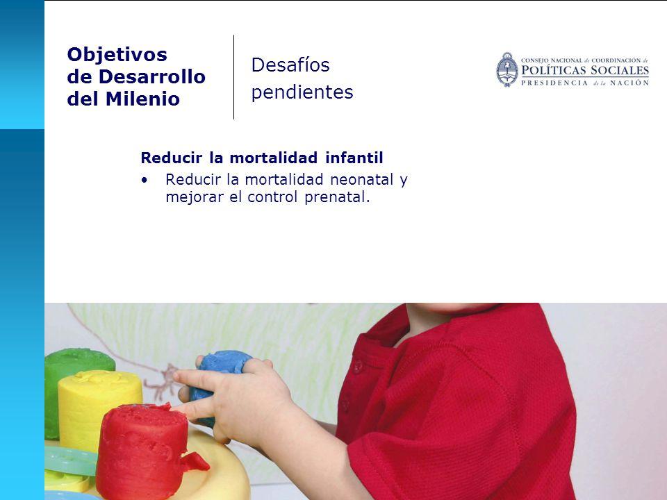 Objetivos de Desarrollo del Milenio Reducir la mortalidad infantil Reducir la mortalidad neonatal y mejorar el control prenatal. Desafíos pendientes