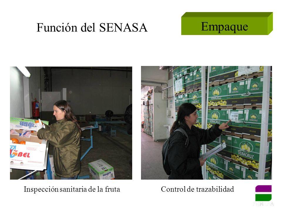 Empaque Función del SENASA Inspección sanitaria de la frutaControl de trazabilidad