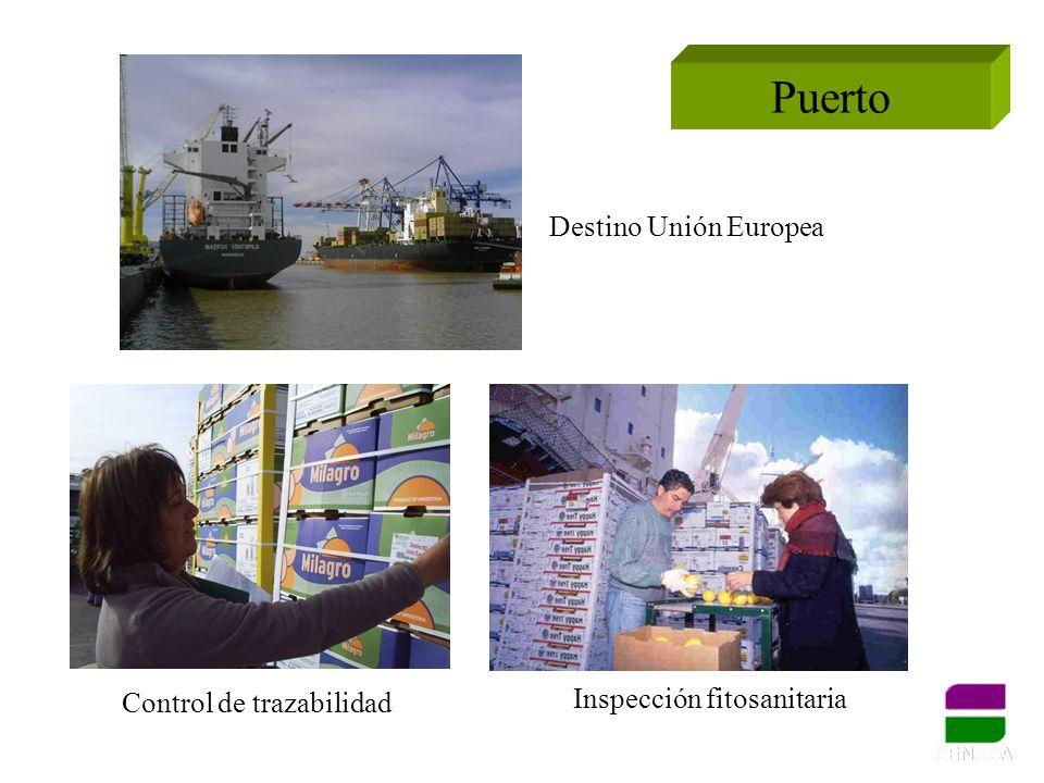 Puerto Inspección fitosanitaria Control de trazabilidad Destino Unión Europea