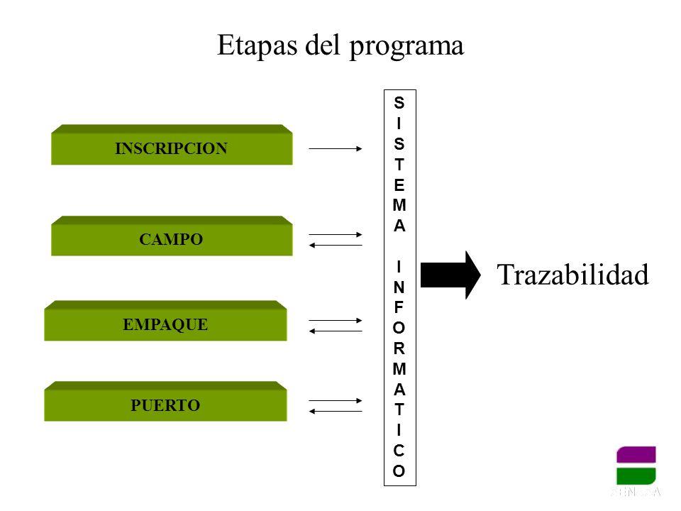 Etapas del programa PUERTO INSCRIPCION CAMPO EMPAQUE Trazabilidad SISTEMAINFORMATICOSISTEMAINFORMATICO