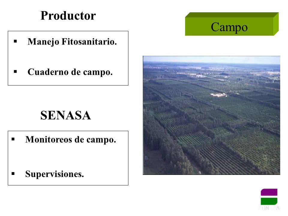 Manejo Fitosanitario. Cuaderno de campo. Productor Campo SENASA Monitoreos de campo. Supervisiones.