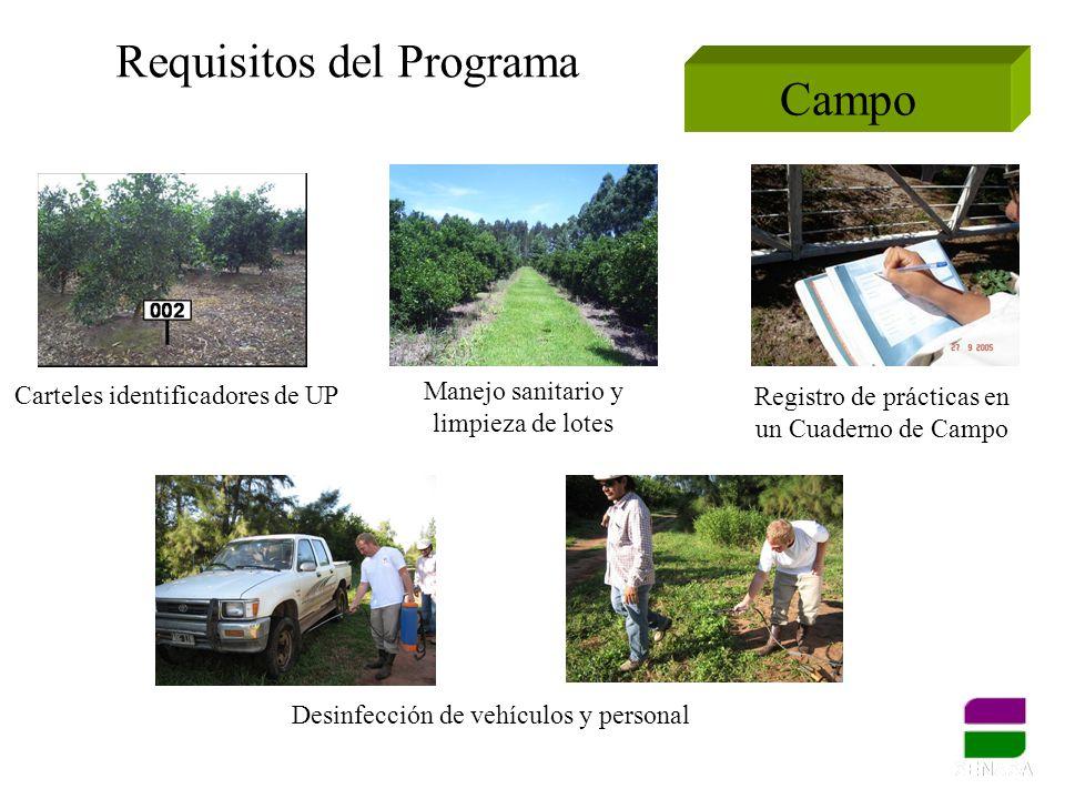 Requisitos del Programa Campo Carteles identificadores de UP Manejo sanitario y limpieza de lotes Registro de prácticas en un Cuaderno de Campo Desinf