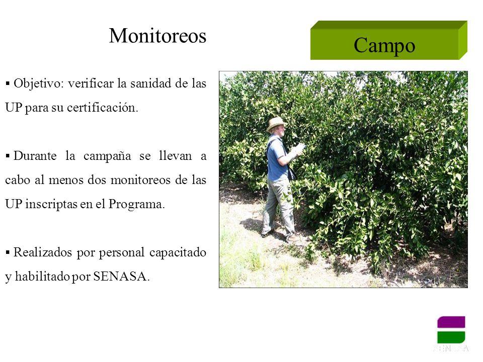 Campo Objetivo: verificar la sanidad de las UP para su certificación. Durante la campaña se llevan a cabo al menos dos monitoreos de las UP inscriptas