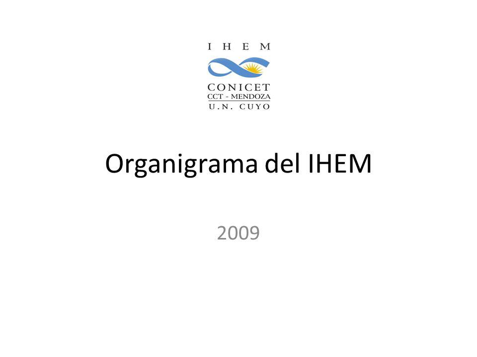 Organigrama del IHEM 2009