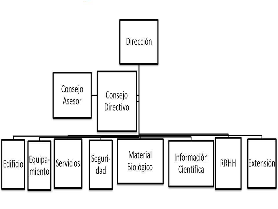 CONSEJO DIRECTIVO Titulares SOSA, Miguel A.MAYORGA, Luis S.