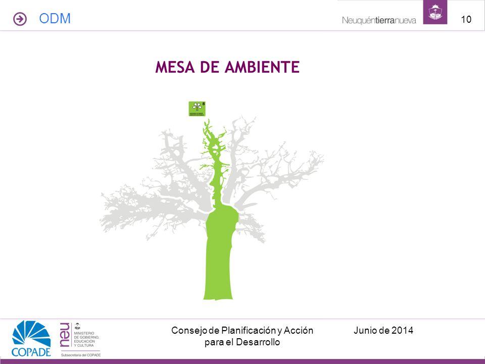 MESA DE AMBIENTE ODM Junio de 2014Consejo de Planificación y Acción para el Desarrollo 10