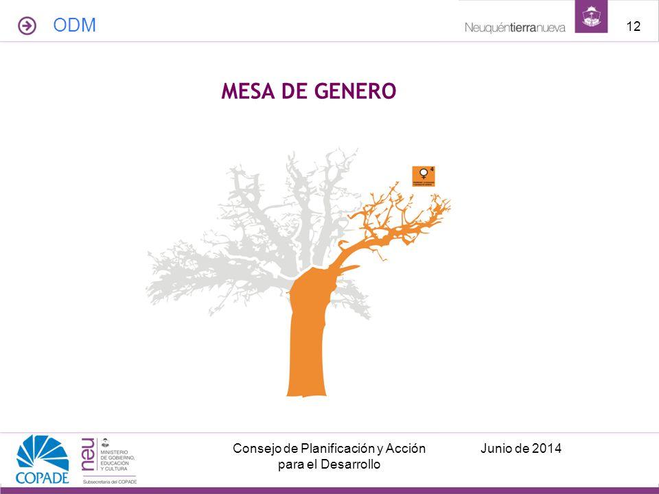 ODM Junio de 2014Consejo de Planificación y Acción para el Desarrollo 12 MESA DE GENERO