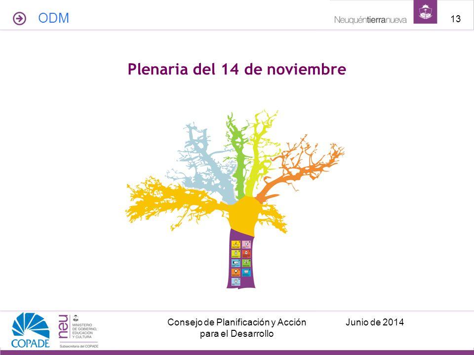 Plenaria del 14 de noviembre ODM Junio de 2014Consejo de Planificación y Acción para el Desarrollo 13