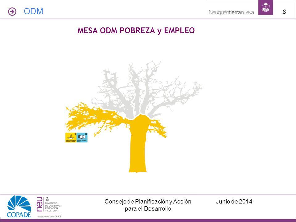 MESA ODM POBREZA y EMPLEO ODM Junio de 2014Consejo de Planificación y Acción para el Desarrollo 8