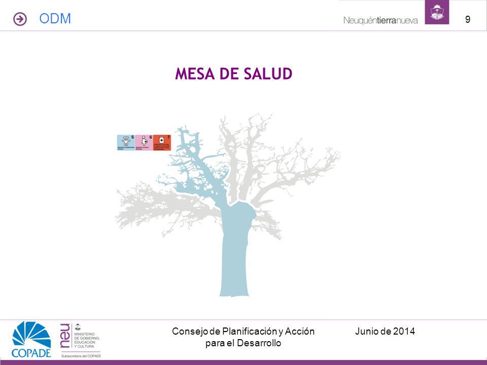 ODM Junio de 2014Consejo de Planificación y Acción para el Desarrollo 9 MESA DE SALUD