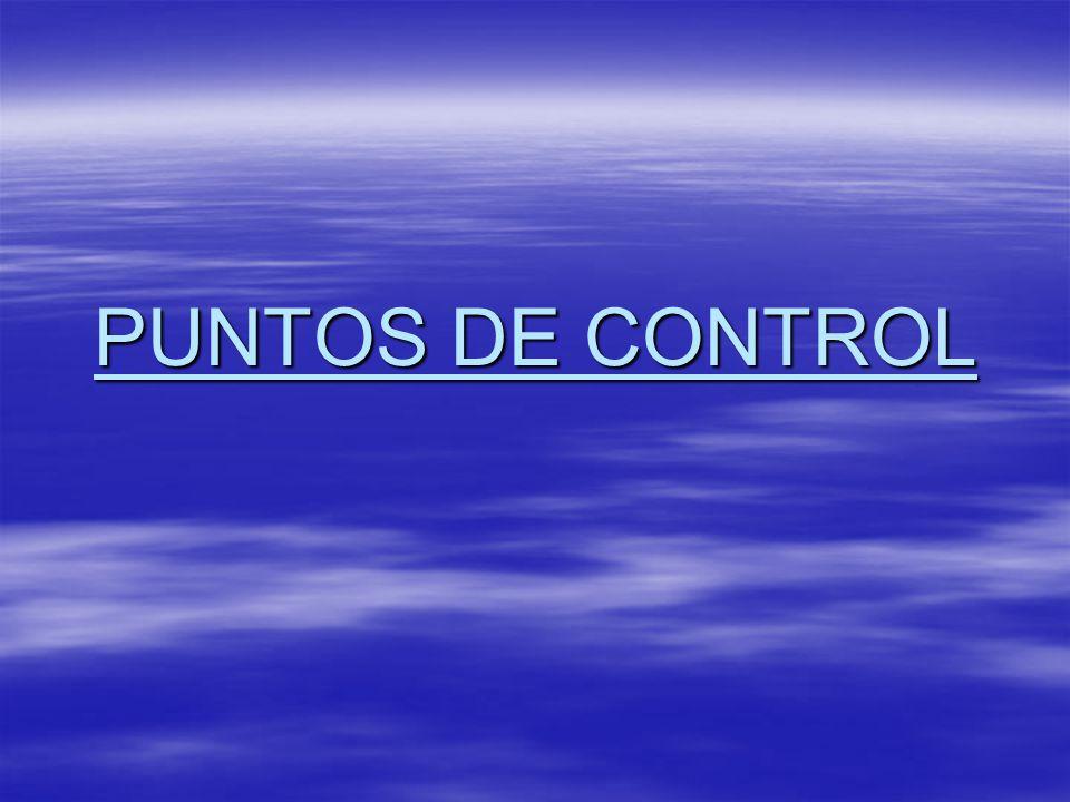 PUNTOS DE CONTROL