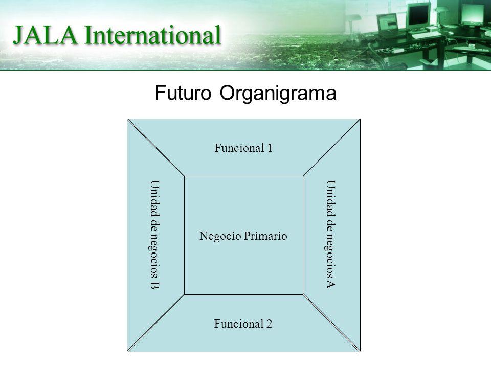 Futuro Organigrama Negocio Primario Funcional 1 Funcional 2 Unidad de negocios A Unidad de negocios B