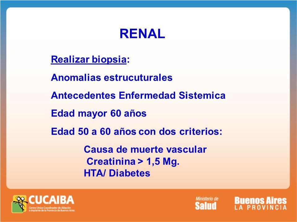 RENAL Realizar biopsia: Anomalias estrucuturales Antecedentes Enfermedad Sistemica Edad mayor 60 años Edad 50 a 60 años con dos criterios: Causa de muerte vascular Creatinina > 1,5 Mg.