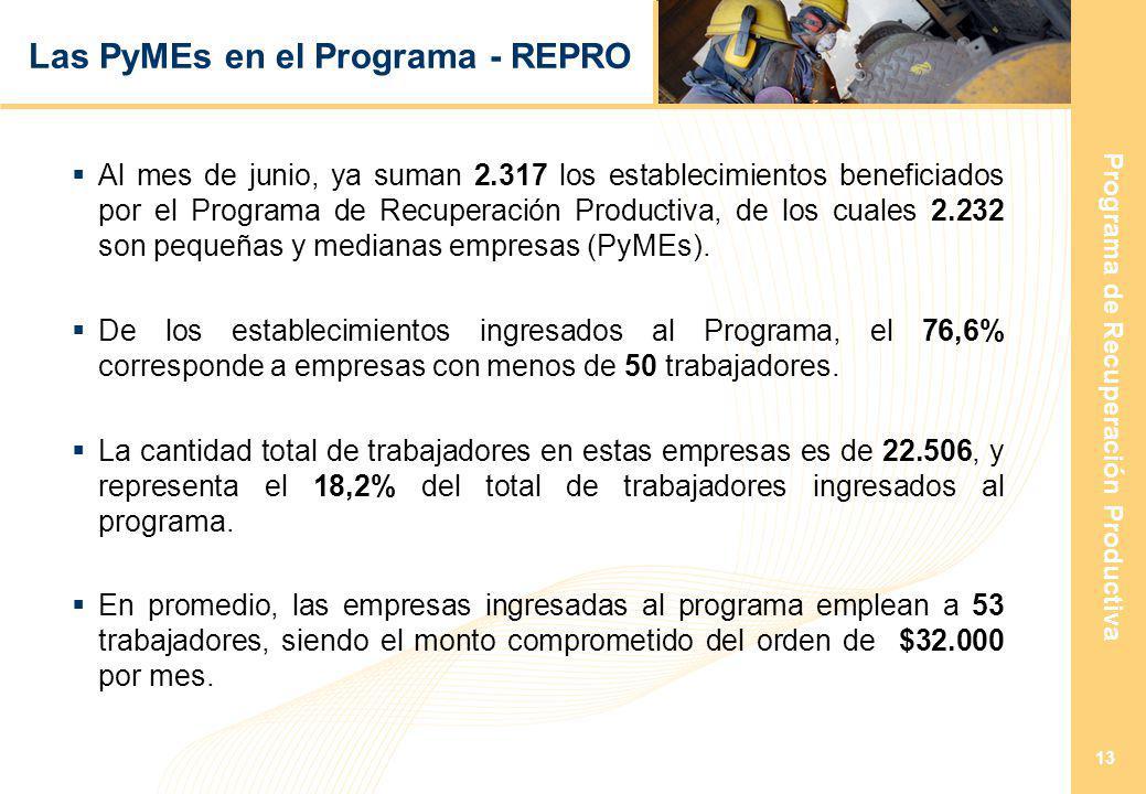 Programa de Recuperación Productiva 13 Las PyMEs en el Programa - REPRO Al mes de junio, ya suman 2.317 los establecimientos beneficiados por el Programa de Recuperación Productiva, de los cuales 2.232 son pequeñas y medianas empresas (PyMEs).
