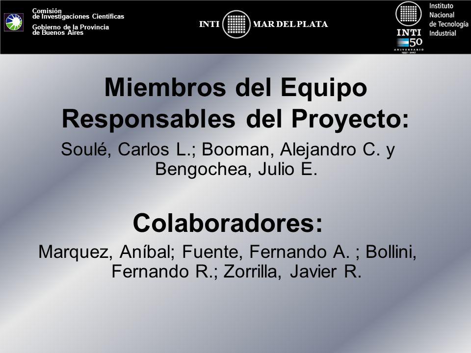 Comisión de Investigaciones Científicas Gobierno de la Provincia de Buenos Aires MAR DEL PLATAINTI Miembros del Equipo Responsables del Proyecto: Soul
