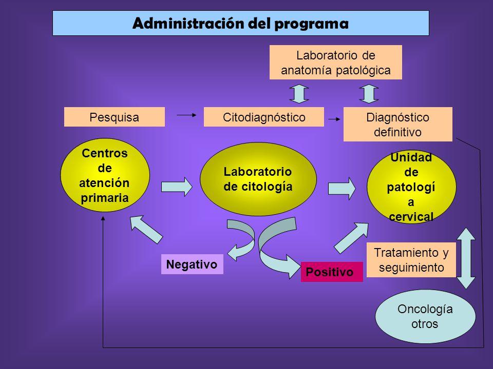 Laboratorio de anatomía patológica Diagnóstico definitivo CitodiagnósticoPesquisa Centros de atención primaria Administración del programa Unidad de p