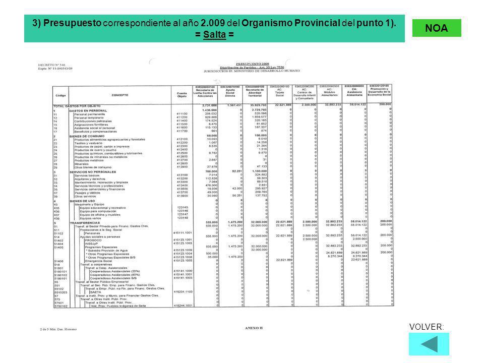 3) Presupuesto correspondiente al año 2.009 del Organismo Provincial del punto 1).