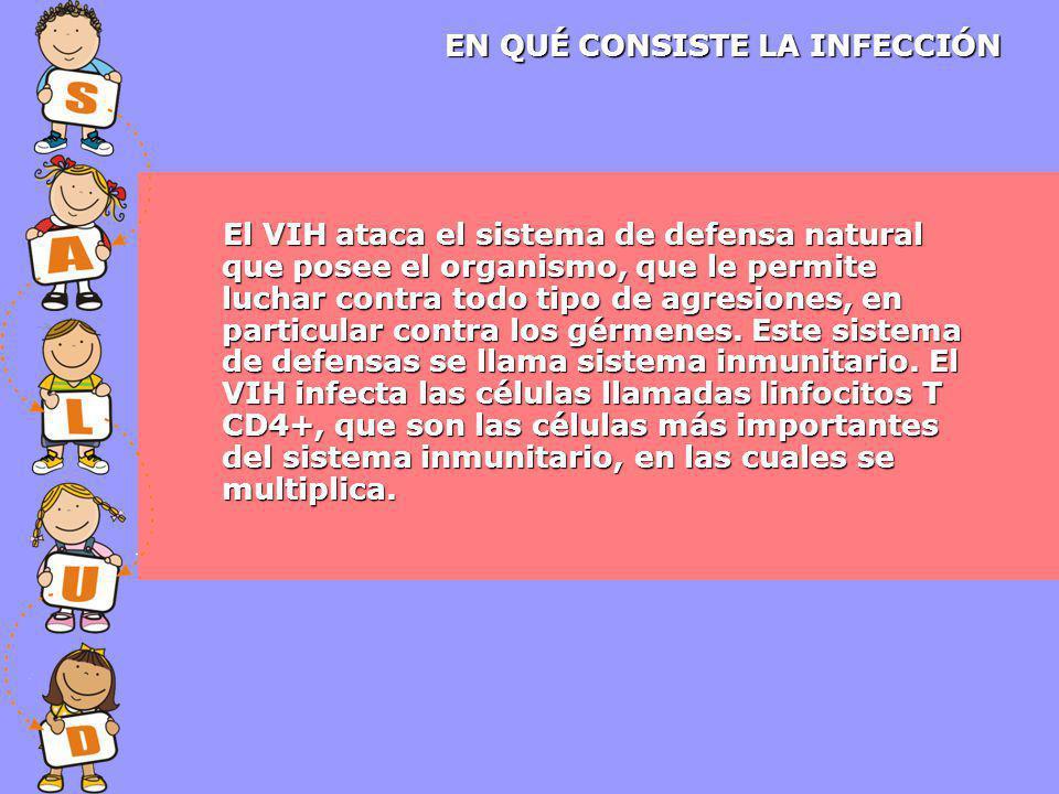 El VIH ataca el sistema de defensa natural que posee el organismo, que le permite luchar contra todo tipo de agresiones, en particular contra los gérmenes.
