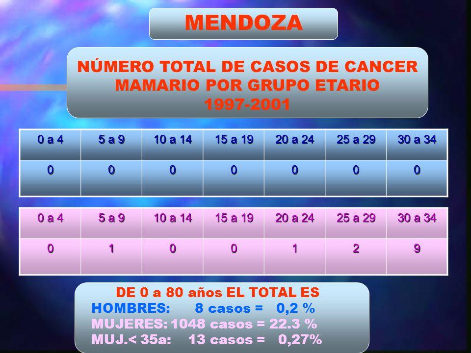 MENDOZA NÚMERO TOTAL DE CASOS DE CANCER MAMARIO POR GRUPO ETARIO 1997-2001 0 a 4 5 a 9 10 a 14 15 a 19 20 a 24 25 a 29 30 a 34 0000000 0 a 4 5 a 9 10