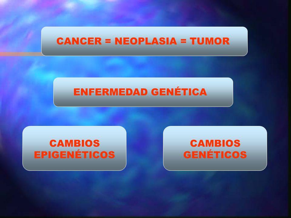 CANCER = NEOPLASIA = TUMOR ENFERMEDAD GENÉTICA CAMBIOS EPIGENÉTICOS CAMBIOS GENÉTICOS