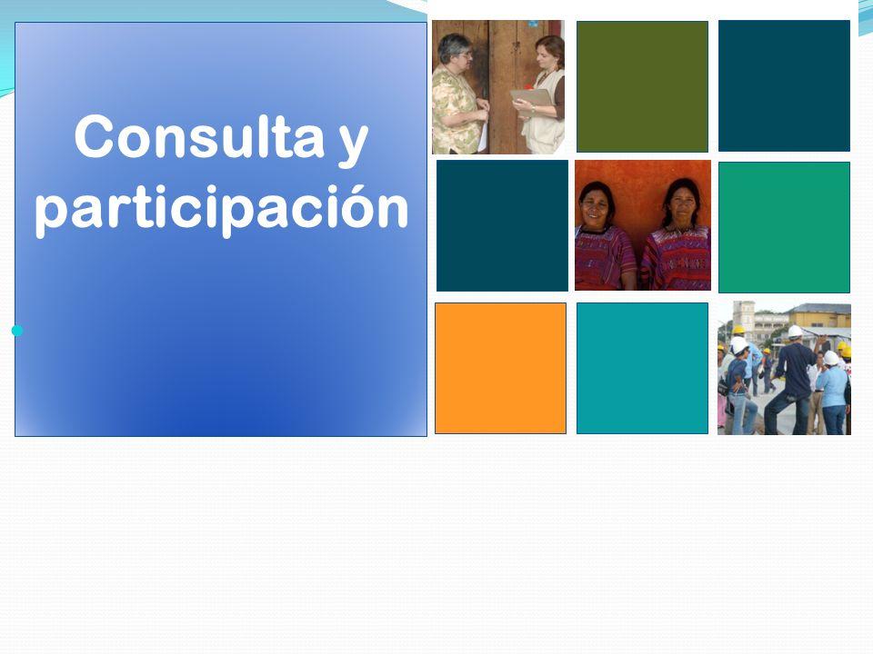 Consulta y participación