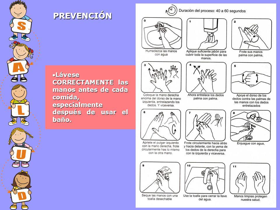 PREVENCIÓN Lávese CORRECTAMENTE las manos antes de cada comida, especialmente después de usar el baño.Lávese CORRECTAMENTE las manos antes de cada com