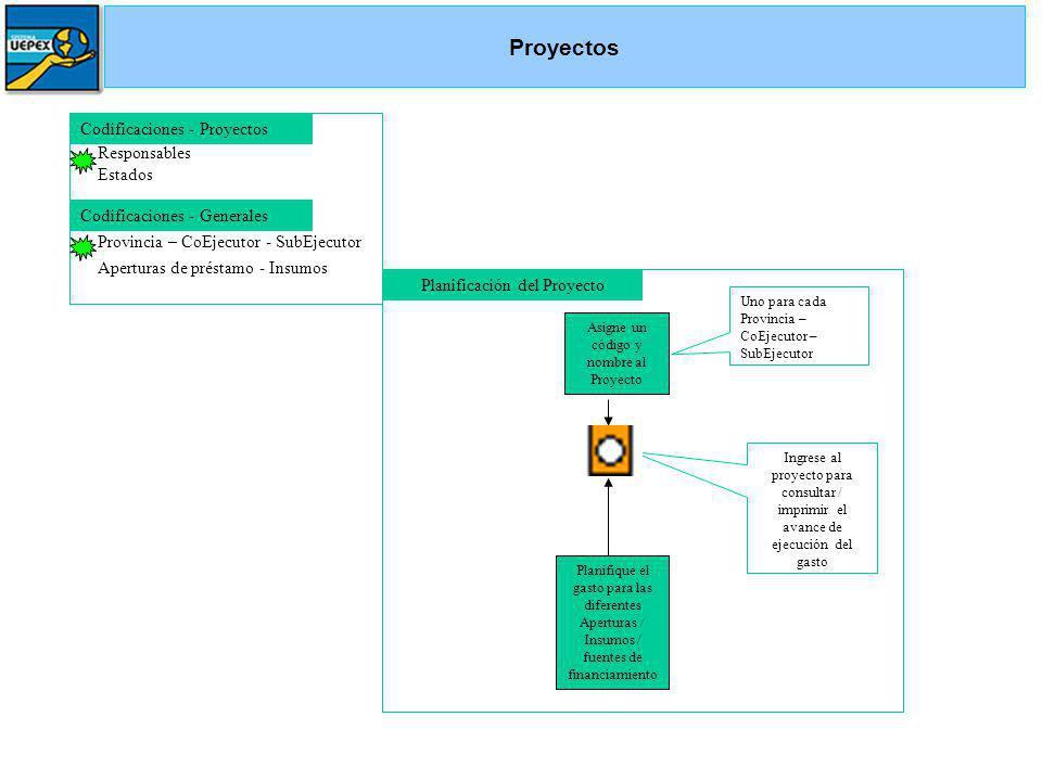 Asigne un código y nombre al Proyecto Uno para cada Provincia – CoEjecutor – SubEjecutor Codificaciones - Proyectos Responsables Estados Ingrese al pr